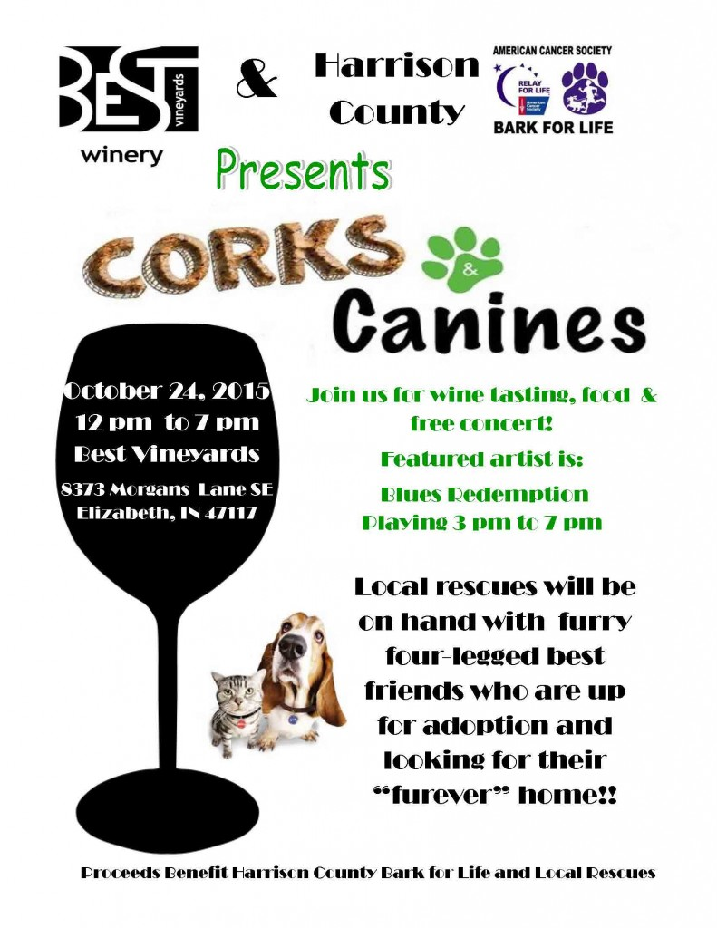 Cork and Canines Flyer